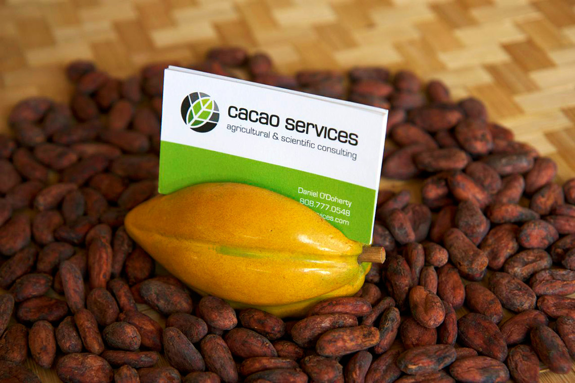 cacao-services-business