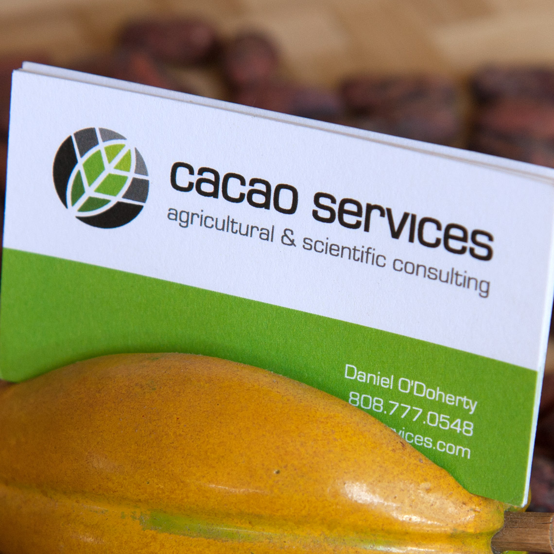 Cacao Services, Inc.